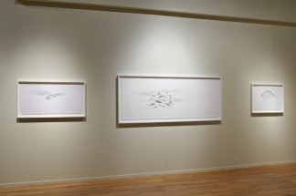 Installation view of Julián Terán's drawings, Cecilia De Torres Ltd.