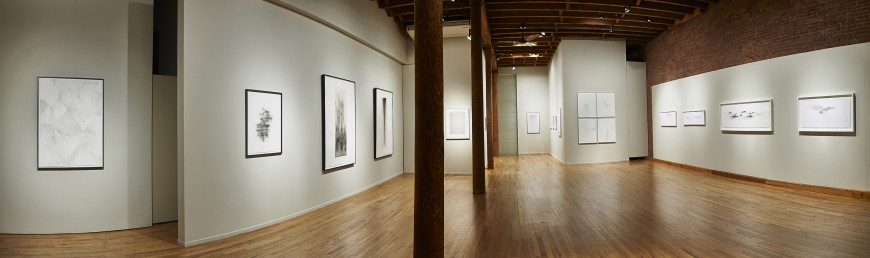 Installation view at Cecilia de Torres, Ltd. New York - , Cecilia de Torres, Ltd.