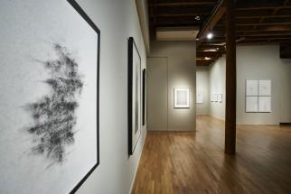 View of Catalina Chervin's drawing, Cecilia De Torres Ltd.